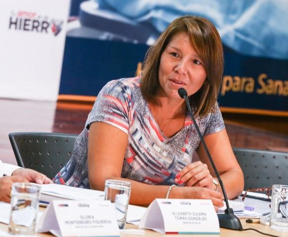 """Ministra Bustamante: """"El ciudadano debe ser el centro del trabajo articulado para el cierre de brechas"""""""