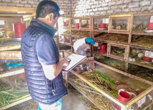 MINAGRI entregará certificados a 262 campesinos para reconocer sus competencias productivas agropecuarias