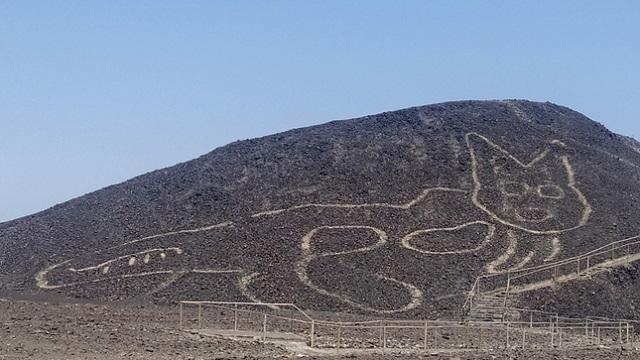 Nazca: descubren nuevas líneas en forma de gato | VIDEO