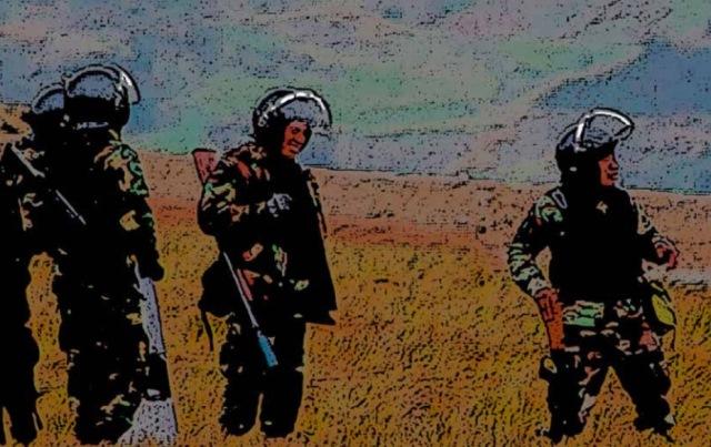 Proyecto busca prohibir convenios entre Policía y mineras