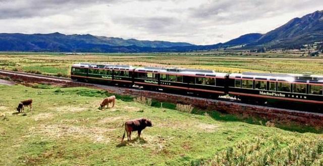 Inca Rail destaca entre los mejores trenes de Sudamerica