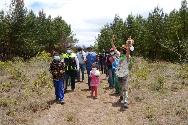 MPCH participa de reforestación en Huancas