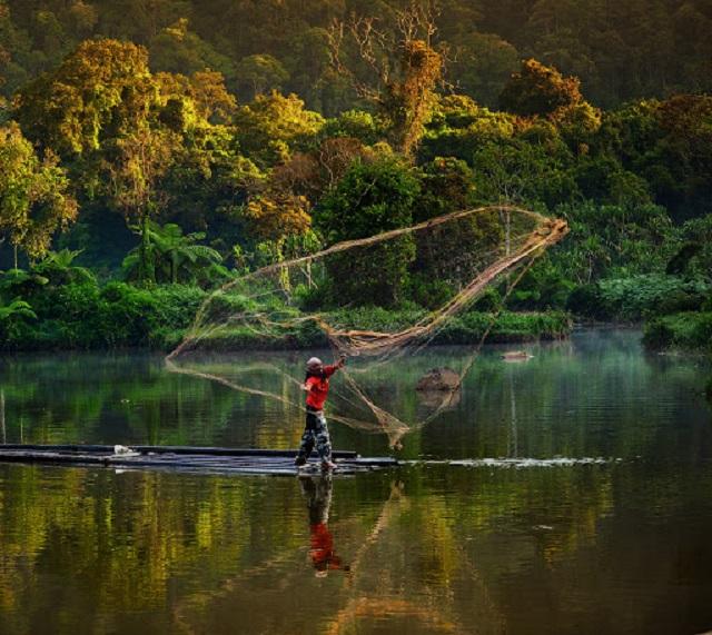 Anuncian iniciativa conjunta Pacto por la Amazonía y los bosques saludables