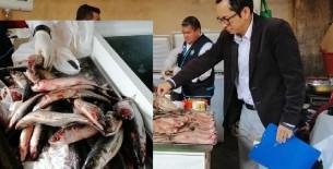 En operativo inopinado encuentran pescado malogrado en Hiper Mercados Requejo
