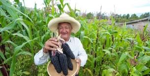 Gobierno inicia implementación del FAE-AGRO para inyectar S/ 2,000 millones en créditos a pequeños productores
