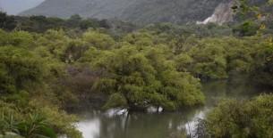 Minagri hará realidad el drenaje del Río Shocol en Rodríguez de Mendoza